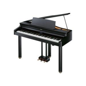 PIANOFORTE DIGITALE A CODA ROLAND RG-1F